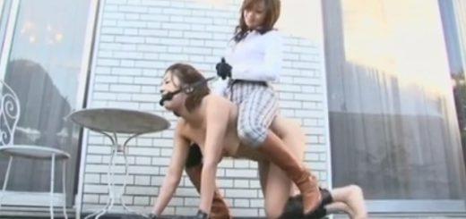 乗馬プレイ